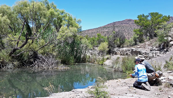 fly fishing little fish river somerset east andle and antelope